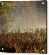 Fall In Cades Cove Acrylic Print