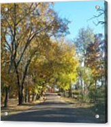 Fall In East Texas Acrylic Print