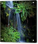 Fall In Eden Acrylic Print