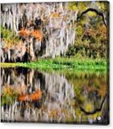 Fall In Florida Acrylic Print