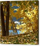Fall In Kaloya Park 3 Acrylic Print