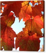 Fall In Love With Autum Acrylic Print
