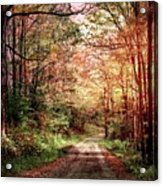 Fall In Monongalia County Acrylic Print