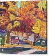 Fall In Santa Clara Acrylic Print