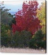 Fall In Santa Fe Acrylic Print
