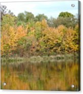 Fall In South Jersey Acrylic Print by D R TeesT
