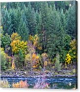 Fall In Spokane Acrylic Print