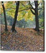 Fall In Stony Brook Acrylic Print