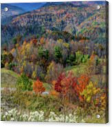 Fall In Tennessee Acrylic Print