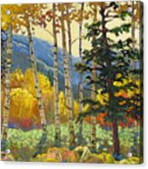 Fall In The San Juans Acrylic Print by Susan McCullough