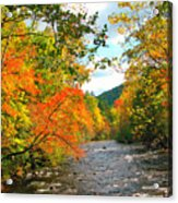 Fall In The Smokey Mountains  Acrylic Print