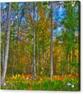 Fall In The Swamp Acrylic Print