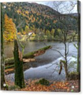 Fall In Vosges National Park Acrylic Print
