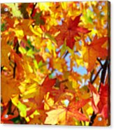 Fall Leaves Background Acrylic Print