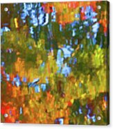Fall Leaves On River 12 Acrylic Print