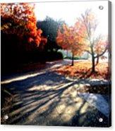 Fall Morning Acrylic Print