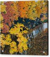 Fall Mosaic II Acrylic Print by Lucinda  Hansen