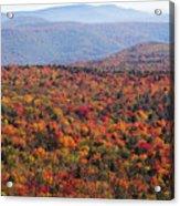Fall Mountains #3 Acrylic Print