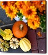 Fall Mums And Pumpkins Acrylic Print