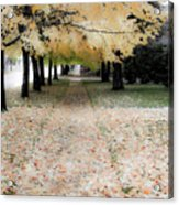 Fall On Oak Street Acrylic Print