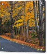 Fall On The Cape Acrylic Print