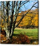 Fall Pasture Acrylic Print