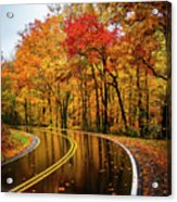 Fall Rain Acrylic Print