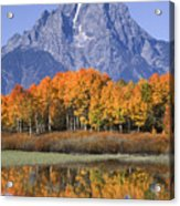 Fall Reflection At Oxbow Bend Acrylic Print
