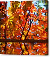 Fall Reflextion Acrylic Print