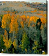 Fall Ridge Acrylic Print