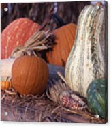 Fall-roadside-produce Acrylic Print