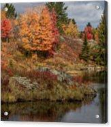 Fall Scene 3 Acrylic Print