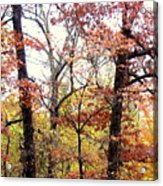 Fall Splatter Acrylic Print by Deborah  Crew-Johnson