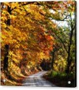Fall Splendor Acrylic Print by Cheryl Helms