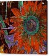 Fall Sunflower Acrylic Print