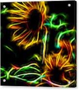 Fall Sunseeker Acrylic Print