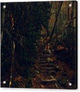 Fall Trail Acrylic Print