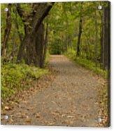 Fall Trail Scene 45 A Acrylic Print