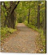 Fall Trail Scene 45 B Acrylic Print