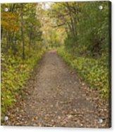 Fall Trail Scene 48 Acrylic Print