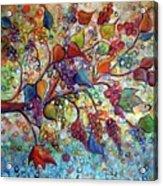 Fall Vineyard  Acrylic Print