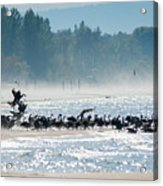 Fall Wasaga Beach Acrylic Print
