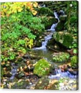Fall Waterfall Acrylic Print