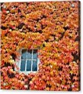 Fall Window Acrylic Print