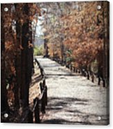 Fall Wonder Land Acrylic Print