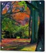Fall Woods Acrylic Print
