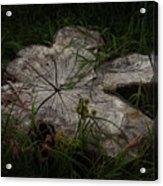 Fallen But Not Forgotten Acrylic Print