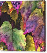 Fallen Acrylic Print by Casey Rasmussen White