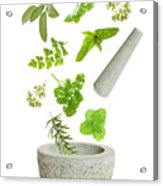 Falling Herbs Acrylic Print by Amanda Elwell