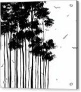 Falls Design 1 Acrylic Print